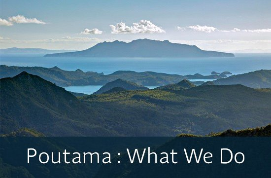 Poutama: What we do