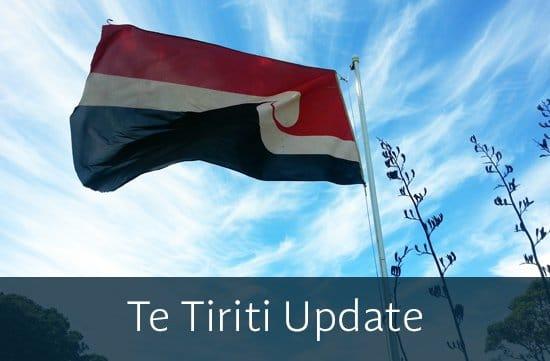 Te Tiriti Update